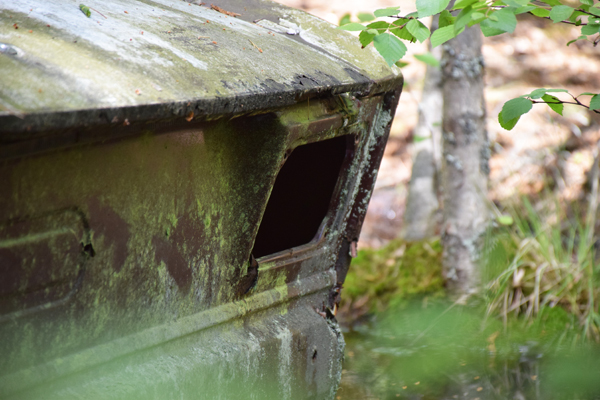 Bilkyrkogården Ryd